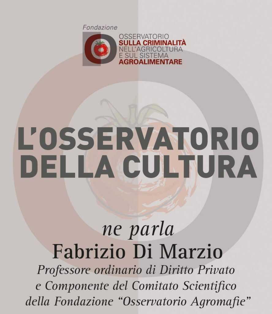 Fabrizio Di Marzio, L'osservatorio della cultura
